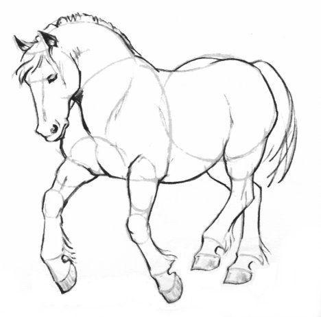 Dessin cheval de trait - Comment dessiner un cheval au galop ...